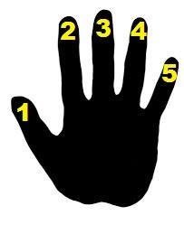 codage doigts