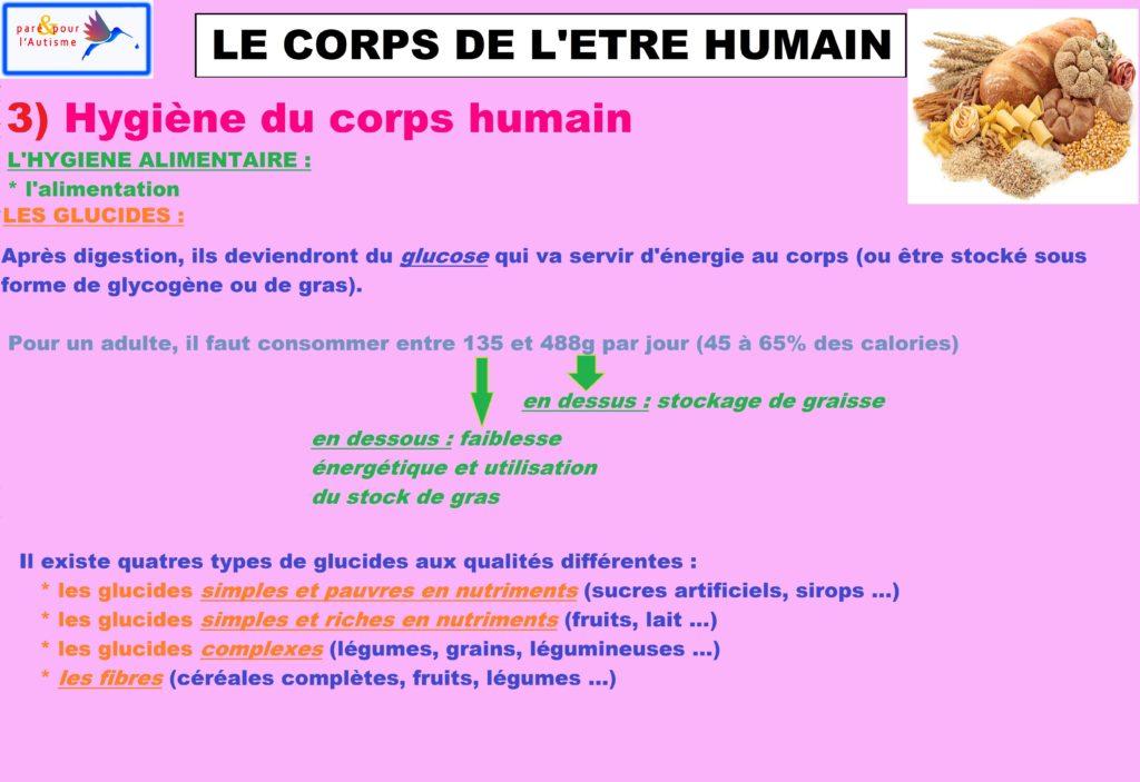 L'attribut alt de cette image est vide, son nom de fichier est hygiène-du-corps-humain-alimentation-4-glucides-1-1-1024x703.jpg.