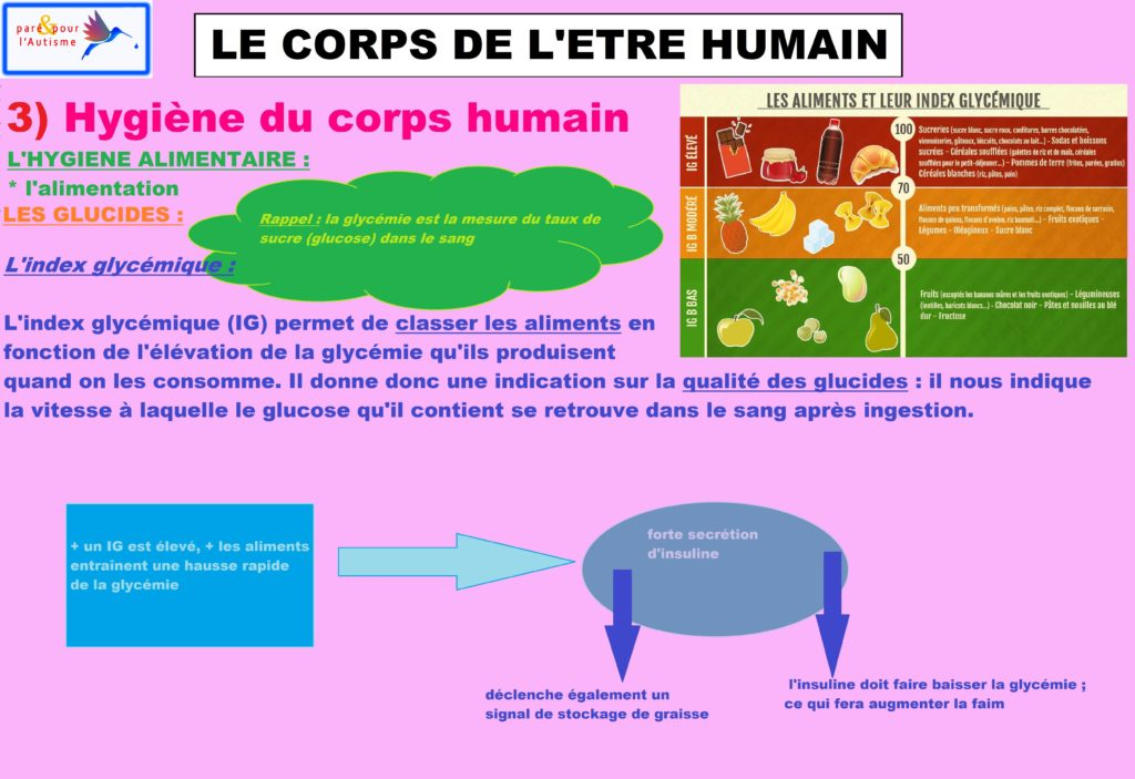 L'attribut alt de cette image est vide, son nom de fichier est hygiène-du-corps-humain-alimentation-5-glucides-1-1-1024x703.jpg.