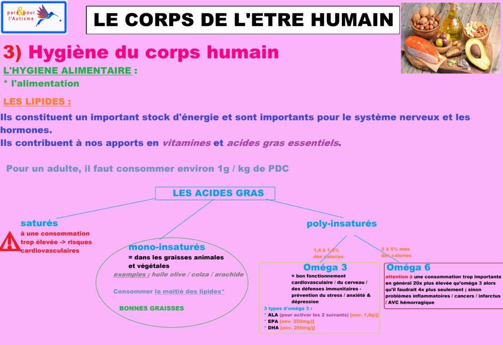 L'attribut alt de cette image est vide, son nom de fichier est hygiène-du-corps-humain-alimentation-7-lipides-1-1024x703.jpg.