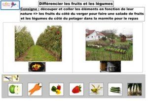 différencier fruits et légumes