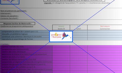 évaluer les compétences scolaires MS maternelle page 2